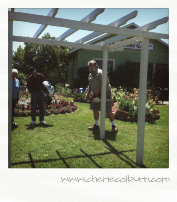 step by step plans to build a pergola